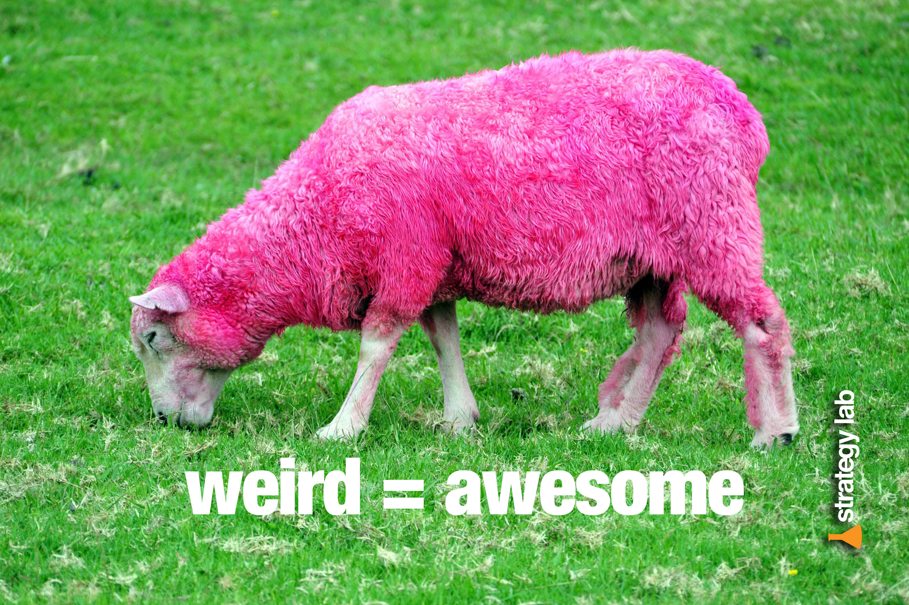 Stratedgy Lab Stickers - Weird equals Awesome